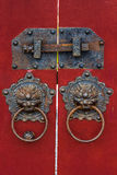 chiński kędziorek Zdjęcia Royalty Free