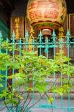 Chiński lampion w ogródzie fotografia stock
