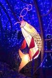 Chiński latarniowy kształt karp zdjęcia royalty free