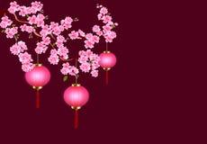 chiński nowy rok E Wiśnia kwitnie z pączkami i liśćmi na gałąź Być może royalty ilustracja