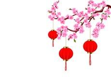 chiński nowy rok Sakura i czerwone światła Wiśnia kwitnie z pączkami i liśćmi na gałąź ilustracja royalty ilustracja