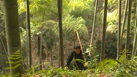 Chiński stary człowiek znajduje bambusowych krótkopędy r w górze kopie i yunnan Chiny zdjęcia stock