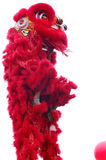 chiński taniec lwa zdjęcie royalty free