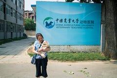 Chiński zwierzę domowe szpital Fotografia Stock