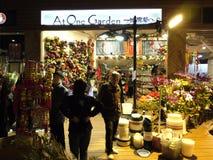 chińskich kwiatów księżycowy nowy sprzedawania rok Obraz Royalty Free