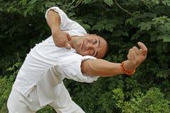 chińskie kung fu zdjęcia stock