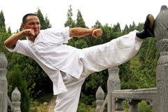 chińskie kung fu Obrazy Royalty Free