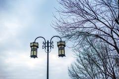 Chińskie latarnie uliczne i gałąź Obraz Stock