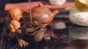 Chińskie Tradycje Kumak w herbacianej ceremonii obraz royalty free