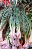 chińskiego kuchni smaków czosnku imbiru znacząco materiałów cebule skakać Obraz Royalty Free