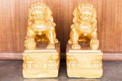 Chińskiej pary złoty singha Zdjęcia Royalty Free