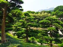 Chi πάρκο κήπων της Zen μονών καλογραιών της Lin Στοκ Φωτογραφίες