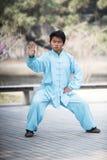 'chi' Cina chuan Kung Fu del Tai Fotografie Stock Libere da Diritti