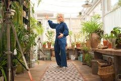 'chi' cinese del tai di arti marziali Donna che pratica disciplina di Taijiquan in una serra con i fiori fotografia stock libera da diritti