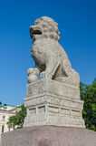 'chi' cinese Tza dei leoni all'argine di Petrovskaya Immagine Stock Libera da Diritti