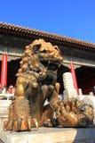 Chińczyka kamienny lew Obraz Royalty Free