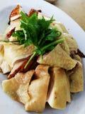Chińczyka odparowany kurczak Obrazy Royalty Free