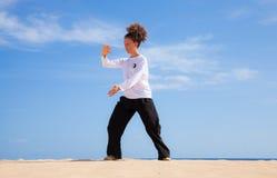 Chi de Tai dans les dunes Image libre de droits