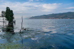 Chi Dian λίμνη Στοκ Φωτογραφία