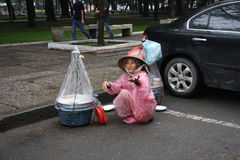 chi ho minh sprzedawca uliczny wietnamczyk Obraz Royalty Free