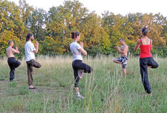 Chi Kung. Outdoors qigong classes in the parks of Voronezh Royalty Free Stock Image