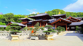 chi lin boeddhistisch klooster in Hongkong Stock Fotografie