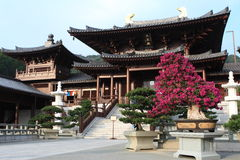Chi Lin Nunnery. In HK royalty free stock image