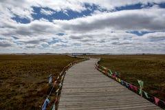 Chi ponte di legno di fila della prateria Immagine Stock Libera da Diritti