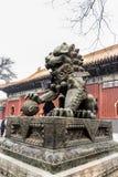 chińscy smoki Obraz Stock