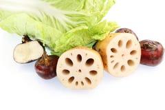 chińscy warzywa Obraz Stock
