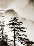 Chińska góra Obraz Royalty Free