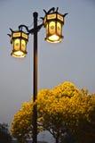 chińska lampowa ulica Obraz Royalty Free