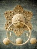 Chiński drzwiowego knocker kwiat Obraz Stock