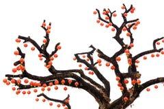 chiński latarniowy drzewo Zdjęcia Stock