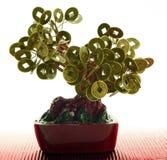 chiński monetarny drzewo Obraz Royalty Free