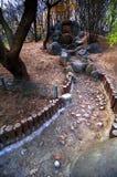 chiński ogrodu rock Zdjęcie Stock