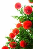 chińskich lampionów nowy czerwony rok Zdjęcie Stock