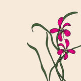 Chińskiego elementu rysunkowa orchidea royalty ilustracja