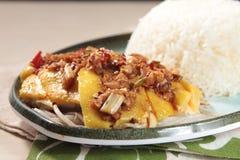 Chińskiego stylu kurczaka odparowana kuchnia Fotografia Stock