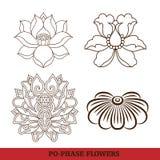 chińskiej kwiatów fazy po ustalony wirtualny Zdjęcia Royalty Free