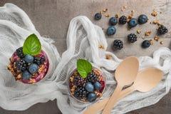 Chia布丁冷甜点用黑莓和蓝莓圆滑的人和格兰诺拉麦片 库存图片