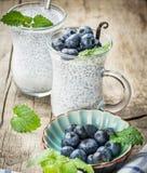 Chia种子布丁做用蓝莓 免版税库存图片