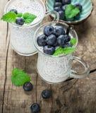 Chia种子布丁用蓝莓 库存图片