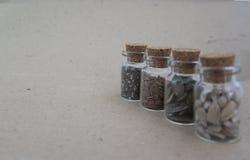 Chia种子,向日葵种子,在烧瓶的南瓜在纸卡拉服特 免版税库存照片