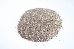 Chia种子 免版税库存图片
