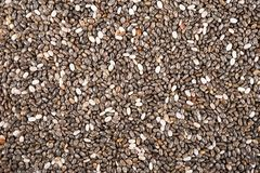 Chia Stock Images