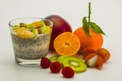 Chia-dessert-fruits-4 Fotos de archivo libres de regalías