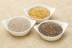 Chia and flax seed Royalty Free Stock Photo