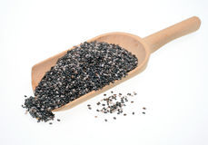 Chia. Food, seeds of Salvia hispanica, known as Chia Stock Photos