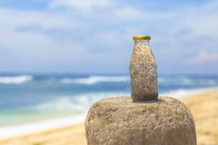 Chia in fresh coconut water. With beach in background royalty free stock image